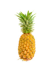 Pine apple isolated on white background. This has clipping path.