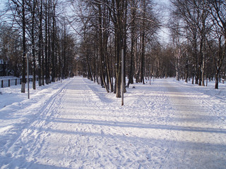 A beautiful winter alley. The tracks are covered with snow, traces in the snow