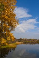 Golden autumn . River scenic landscape