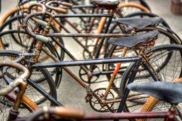 a file of vintage bicycles
