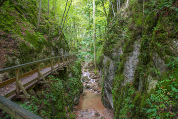 "The ""Johannesbachklamm"" (meaning the gorge and rivulet of Saint John) is a popular destination für hikers at the east side of the Alps in Lower Austria."