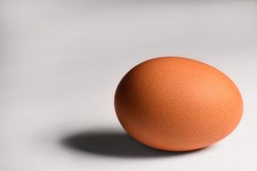 Egg on white background close-up