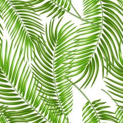 Foto op Canvas Tropische Bladeren Vector realistic tropical leaves exotic vacation