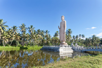 Sri Lanka, Hikkaduwa - A huge Buddha statue in the middle of a lake