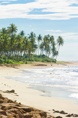 Sri Lanka, Rathgama - Marvelous natural beach landscape of Rajgama aka Rathgama