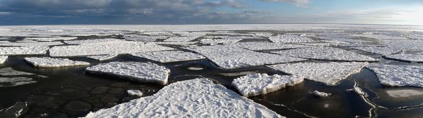 Kra na Morzu Bałtyckim