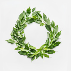 Wall Mural - Round circle frame made of green branches and leaves on white background. Flat lay, top view