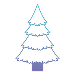 pine tree christmas icon vector illustration design