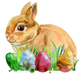Watercolor illustration of a beige rabbit with eggs and grass