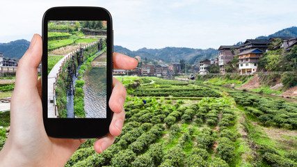 tourist photographs canal near tea plantation