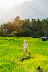 Adorable girl walking in rice field