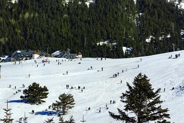 Uludag Mountain view. Uludag Mountain is ski resort of Turkey.