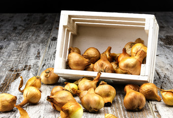 Onion box on rustic table