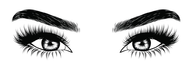 Illustration of woman's sexy luxurious eye with perfectly shaped eyebrows and full lashes. Hand-drawn Idea for business visit card, typography vector. Perfect salon look.