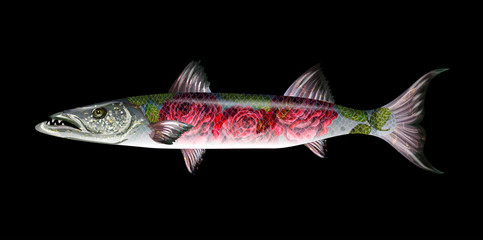 Fish barracuda with roses . Vector illustration