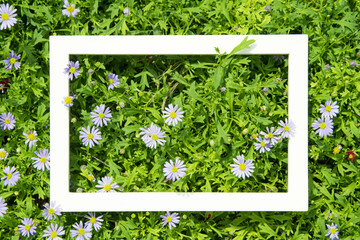 Creative layout made of flowers and leaves with White frame. Top view. Nature concept