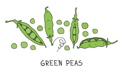 Obraz green peas - fototapety do salonu