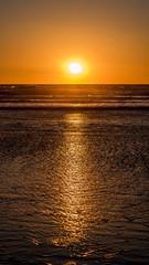 Sun setting over a shimmering ocean