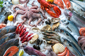 Wall Mural - Seafood on ice