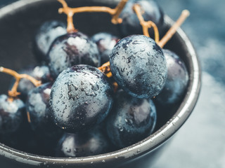 Close-up of the wet fresh blue grape in a black bowl. Mystic light food photography style.