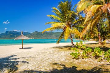 Palm trees on beautiful tropical beach, Mauritius Island