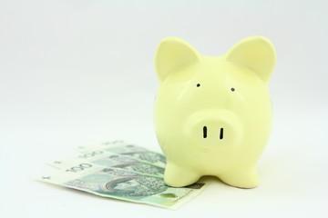 Oszczędności - banknoty odkładane do skarbonki