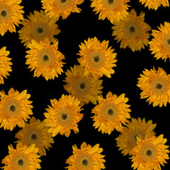 Beautiful floral background of sunflowers
