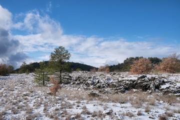Fototapete - Winter Landscape In Etna Park, Sicily
