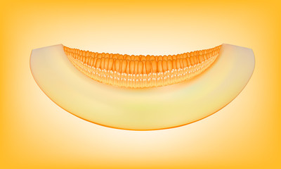 piece of melon isolated on yellow background vector illustration photorealism