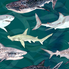 Sharks variety: Blue, Tiger, Whale and Hammerhead, hand painted watercolor illustration, seamless pattern on dark green ocean surface with waves background