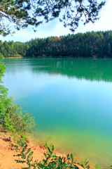 Forest lake with emerald water. Beautiful water landscape