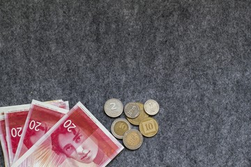 Israeli New Shekel banknotes and coins on Grey background.Copy Space