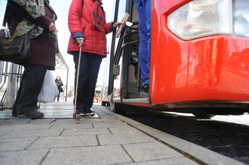 omnibus - bus