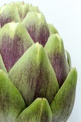 Close up of purple artichoke