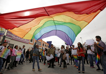 Members of the LGBT community carry a rainbow flag as they take part a Hugathon to protest against homophobia and discrimination, in Ciudad Juarez