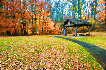 fall colors and landscape scenes