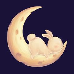 Rabbit sleep on moon