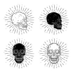 Vector illustration with human skull on blackboard. Used for poster, banner, t-shirt print, bag print, badges and logo design. Vector skull set.