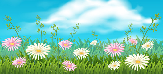 Background scene with pink and white flowers
