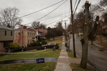 Yard signs showing support for Congressional candidate Conor Lamb adorn residences in Bethel Park