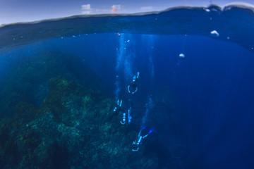 Scuba diving haf and half over under split photo