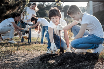 Planet conservation. Positive nice smart boys sitting together and planting a tree while caring about the environment