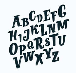 Vector handwritten brush script. Black letters