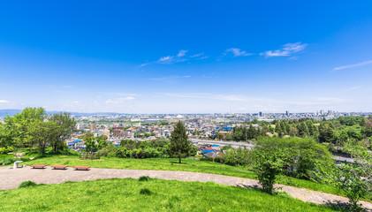 新緑の丘から眺める住宅街 ワイド