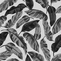 Seamless pattern with exotic tropical leaves. - Royalty-free illustration Tropical climate, Palm tree, Flora, Banana, Tahiti