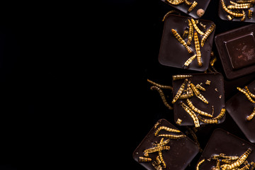Chocolate with edible worms, culinary trends