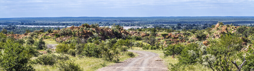 Panoramic scenery in Mapungubwe National park, South Africa