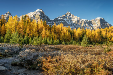 Autumn Larch Valley hike from Lake Moraine