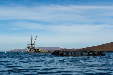 Ranchos atuneros en la Paz Baja California.