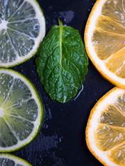 Citrus fruits and mint leaf